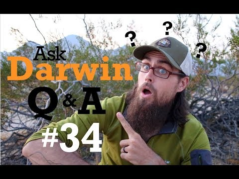 Ask Darwin Q&A #34 (Answers)