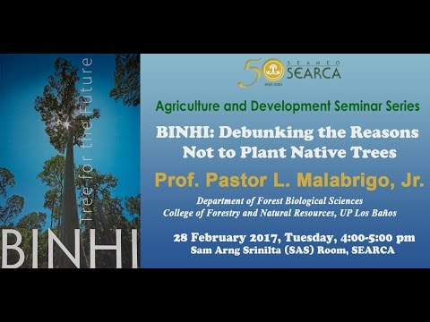 BINHI: Debunking the Reasons Not to Plant Native Trees