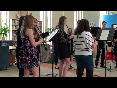 Winneconne High School 2019 Clarinet Choir