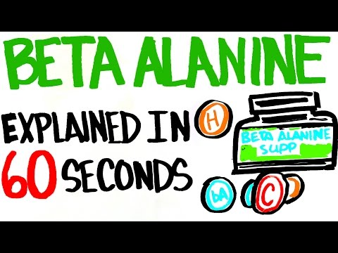Beta Alanine Explained in 60 Seconds Better Than Your Typical Supplement?