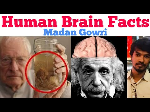 Human Brain Facts | Tamil | Madan Gowri | MG
