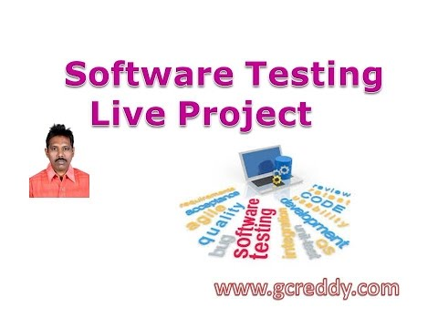 Software Testing Live Project