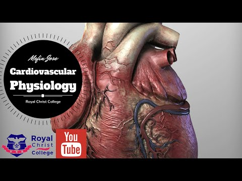 Cardiovascular Physiology :Factors affecting Cardiac output (Heart rate , Stroke volume, Preload)