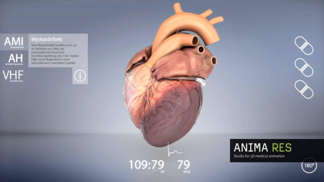 interactive 3d heart animation - YouTube