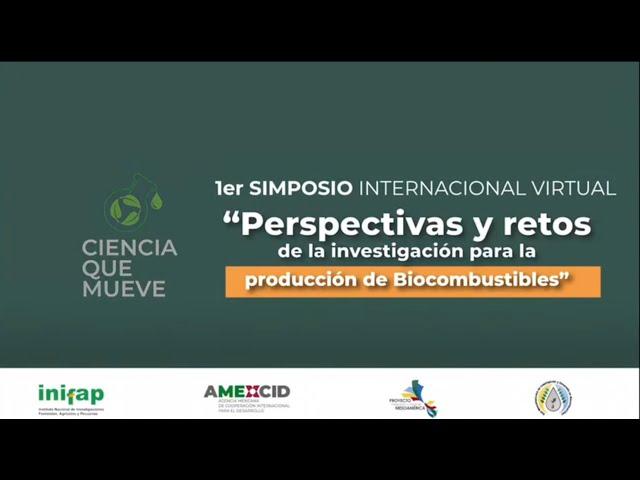 Sesión Día 3;listo Perspectivas y retos de la investigación para la producción de Biocombustibles 2;Del campo a la política pública  La experiencia del programa Mesoamérica sin Hambre en Guatemala 1