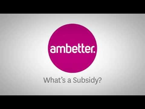 What's a Subsidy?