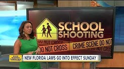 New Florida laws that go into effect July 1, 2018