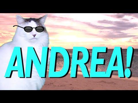 HAPPY BIRTHDAY ANDREA! - EPIC CAT Happy Birthday Song