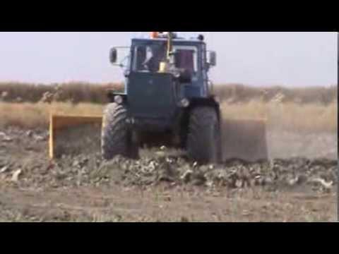 Mara in Kazakhstan: field tests