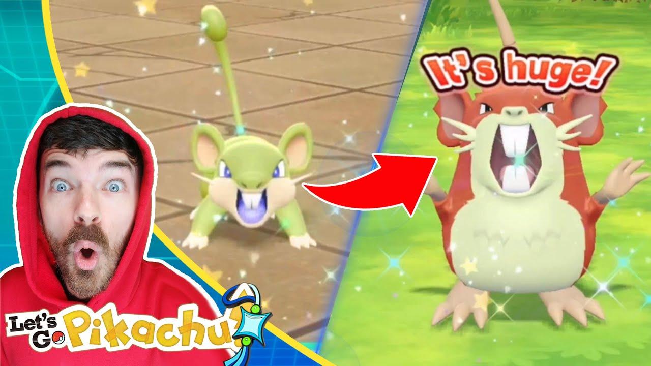 Shiny Rattata & Shiny Raticate Family!   Pokemon Let's Go Pikachu Extreme Shiny Living Dex Series