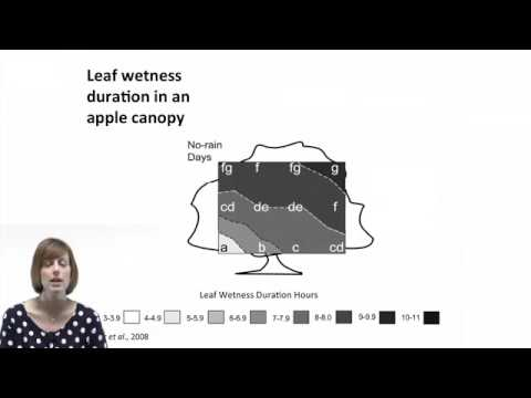 01a   Dr  Tracy Rowlandson  Determining Leaf Wetness with Sensors, Models, and Measurement Methods