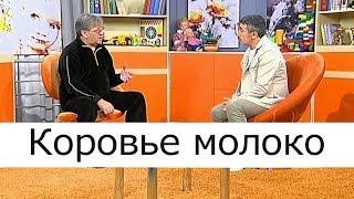 Коровье молоко - Школа доктора Комаровского