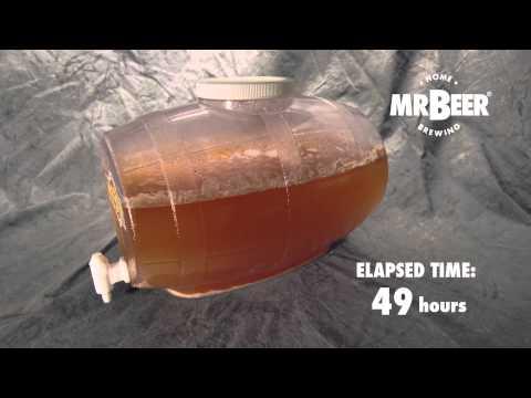 Beer Fermentation Time Lapse Doovi