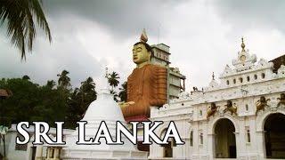 Sri Lanka: Buddhas Lächeln unter Palmen - Reisebericht