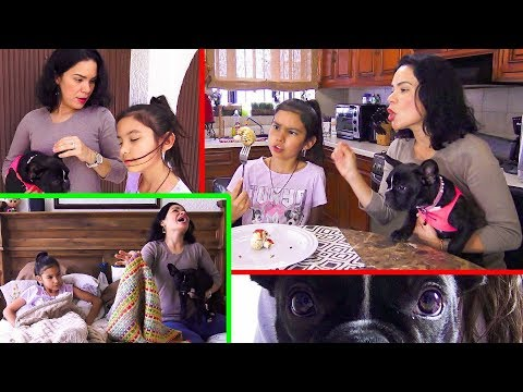 Emilia VS La Beba A Quien Quieren MAS? ESPECIAL 14 DE FEBRERO