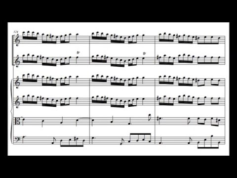 Antonio Vivaldi - Concerto for Two Flutes, RV 533