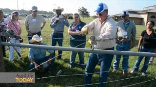 Fence Building Demonstration-texas A&m Beef Cattle Short Course