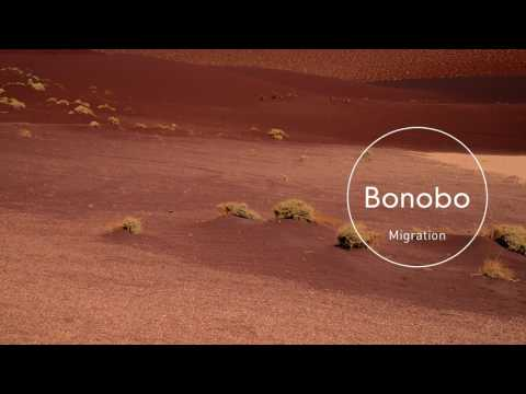 Bonobo : Grains