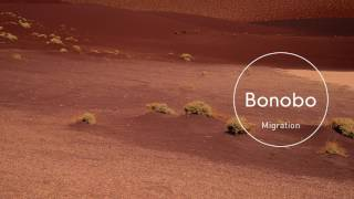 Bonobo : Grains