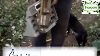 Запрещенное в Украине, шокирующее видео!!! Иловайский котёл   вся ПРАВДА! Донбасс АТО