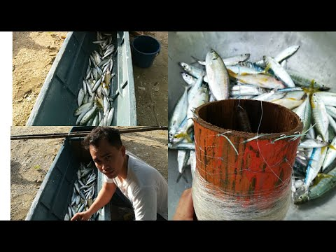 Sabiki Handline Fishing In Mindoro Philippines (Traditional Fishing)