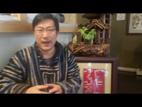 What.different between moxibustion and acupuncture