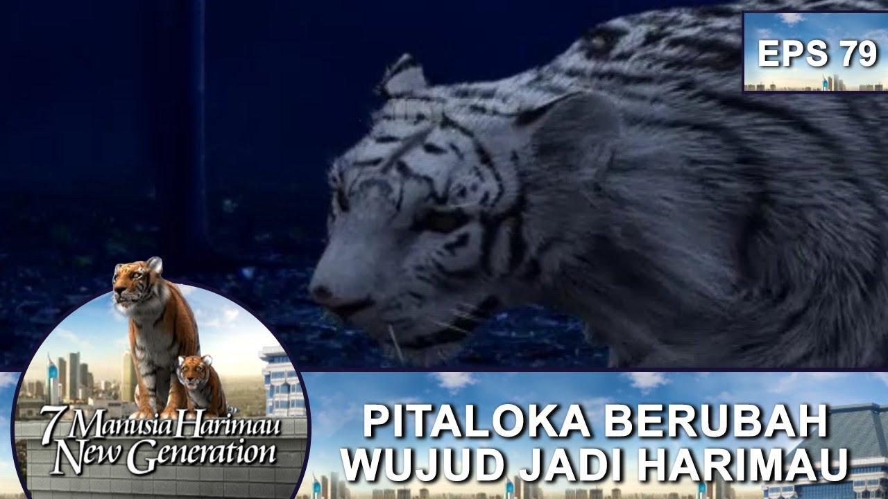 Pitaloka Muncul Dalam Wujud Harimau Putih 7 Manusia Harimau New Generation Eps 79 Part 2 Youtube