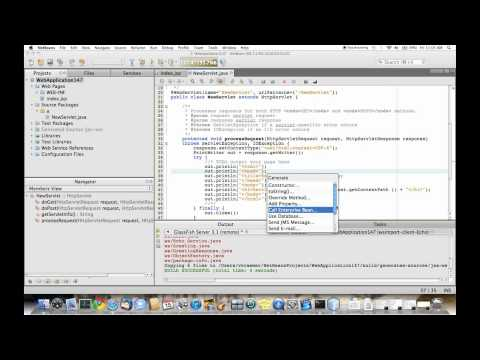 NetBeans Integration Features For GlassFish Server 3.1