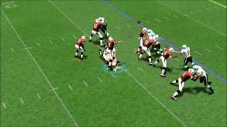 Can Madden 20 Still Learn From APF 2k8?