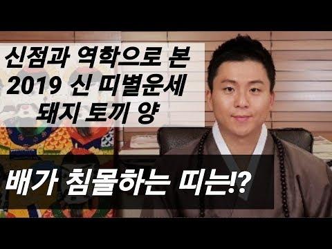 돼지띠 토끼띠 양띠 2019 신년운세! 저절로 부자 되는 띠는!? 무속인 오왕근 용한점집