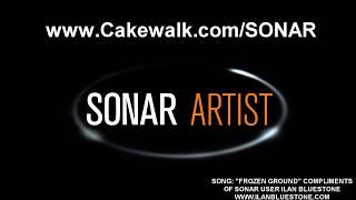 SONAR Artist Overview