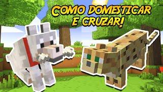 Minecraft como domar e cruzar jaguatiricas e lobos