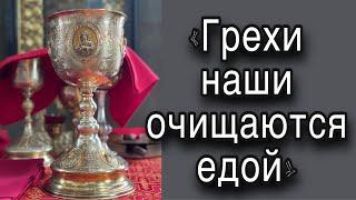 Если кто не родится свыше, не может увидеть Царствия Божия (Ин. 3:3). Протоиерей  Андрей Ткачёв.
