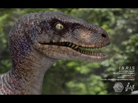 Download Youtube: Jurassic Park Theory: What species did the raptors truly belong to?