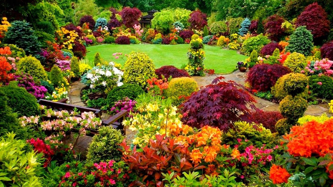 Ideas For Gardens Designs Youtube