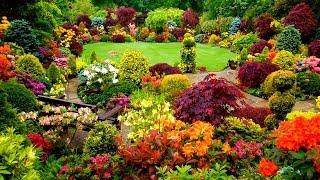 Ideas for Gardens Designs