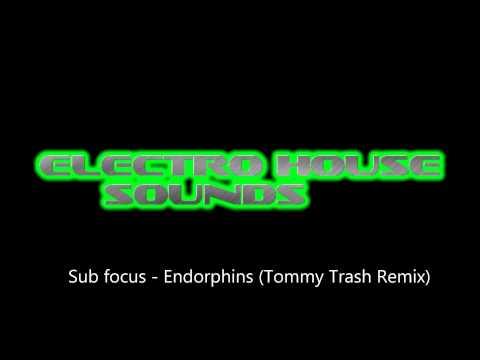 Sub Focus feat. Alex Clare - Endorphins (Tommy Trash Remix) mp3