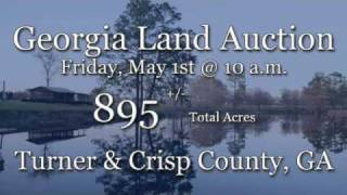 Georgia Land Auction & Georgia Land for Sale Turner & Crisp County