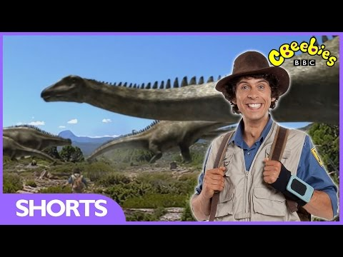 Diplodocus Facts - Andy's Dinosaur Adventures - CBeebies