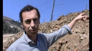 Wine & Sol wine maker Jorge Serodio Borges, Portugal