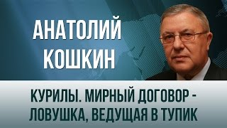 Анатолий Кошкин   Курилы  Мирный договор   ловушка, ведущая в тупик