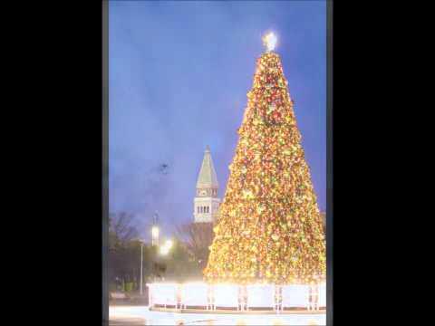 Es ist für uns eine Zeit angekommen( Harp).Christmas songs from Germany