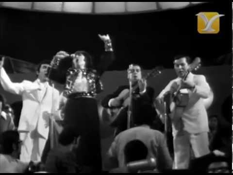 Carmen Ruiz y los Diamantes del Sol, Por no Decirte que Te Amo, Festival de Viña del Mar 1973