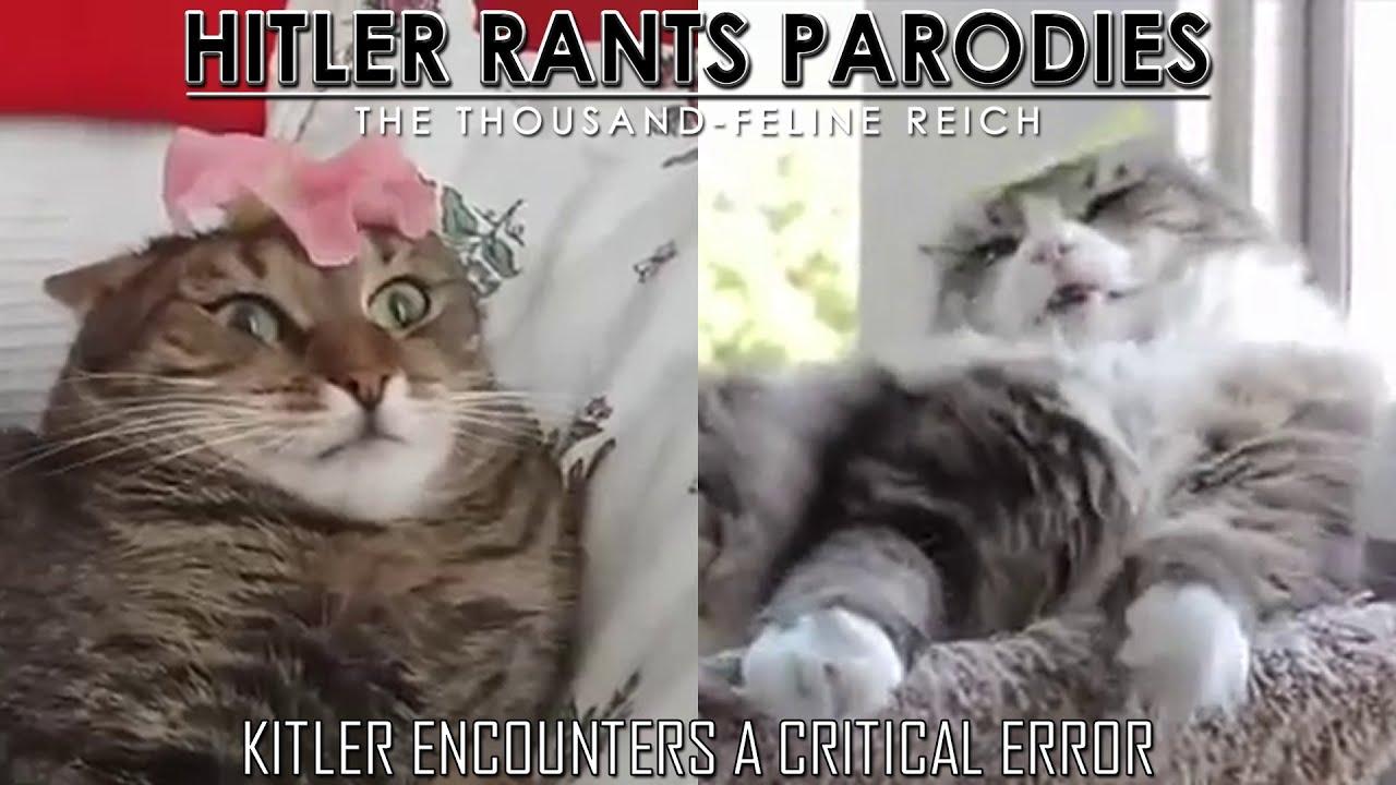 Kitler encounters a critical error