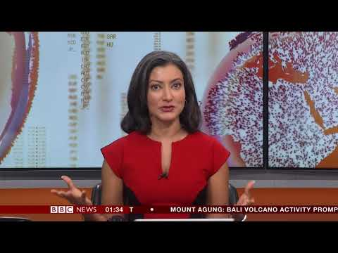 Sharanjit Leyl BBC Asia Business Report November 27th 2017
