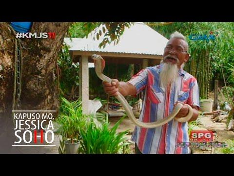 Kapuso Mo, Jessica Soho: Ang Cobra King ng Pangasinan