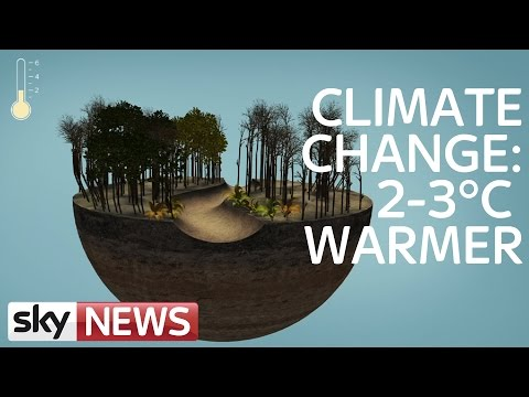 Climate Change: What happens If The World Warms Up By 3°C?