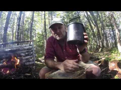 Zebra Billy Can Review - The BEST Bush Pot?
