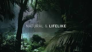 3D Звук природы 3D Sound Of Nature от Dolby Atmos (Слушать в наушниках)