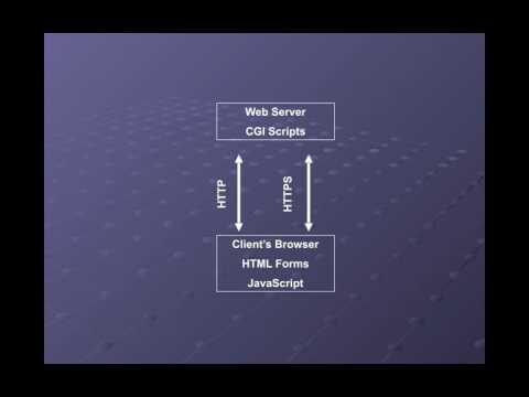 CNIT 123 10: Hacking Web Servers (Part 1)
